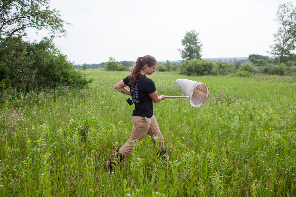 Katie sweeping